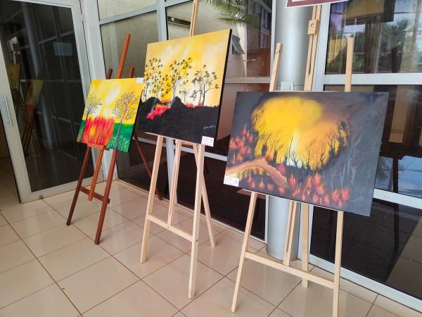 Exposição de quadros na Câmara Municipal retrata fogo no Cerrado